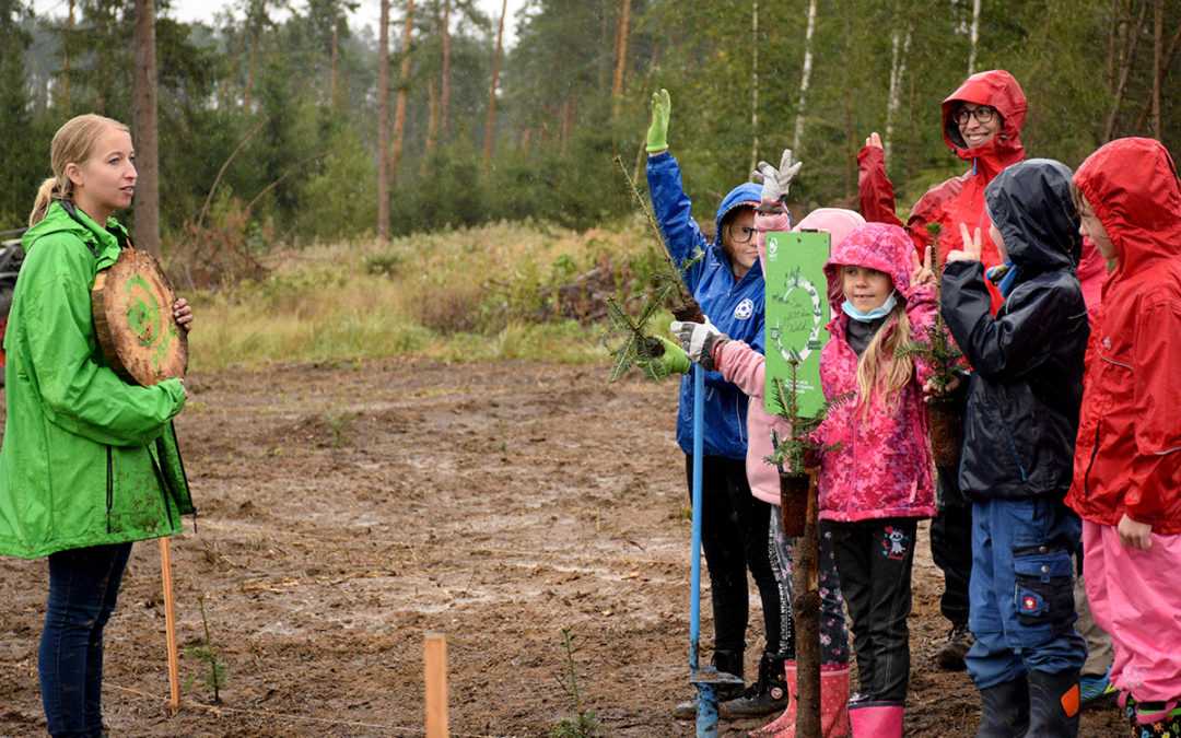 60.000 Bäume für den Zukunftswald